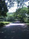 Tatemonoen201105201