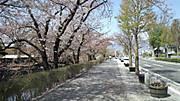 Matumotosansaku201504182